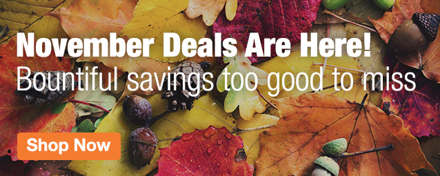Half Page Ad – November Savings! Don't miss these prices! – Click to View Page