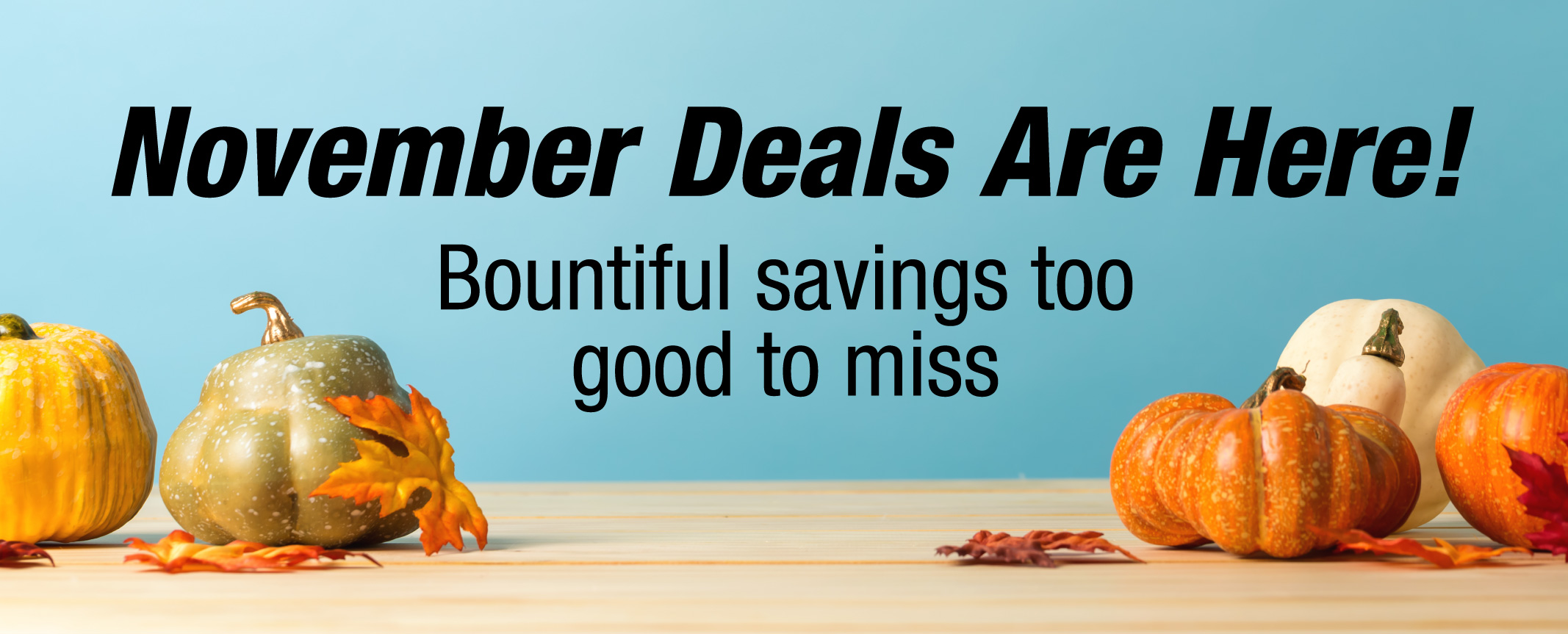 October Deals - Limited Time Offers