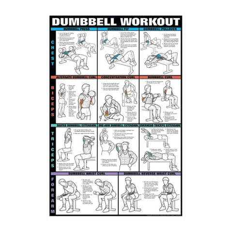 Dumbbell Workout Chart for Chest, Biceps, Triceps & Forearms