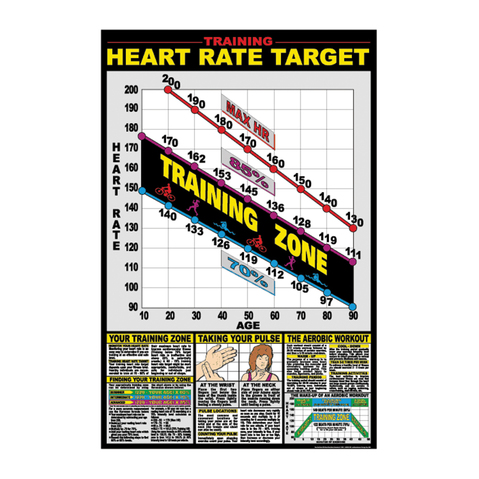 Training Heart Rate Target Detailed Multi Colored Exercise Charts