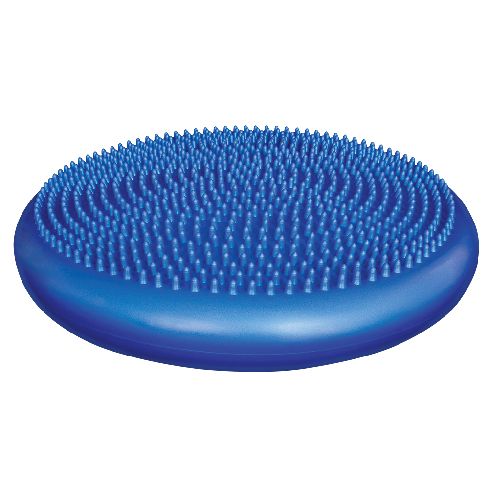 Rehab - Body Sport Balance Disc - Click to Shop